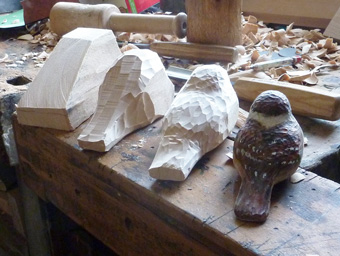 Birds - carving progression